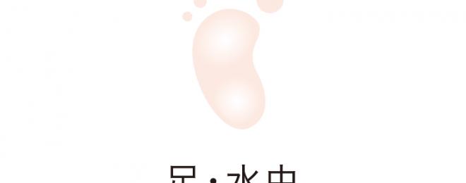 ashi_mizumishi
